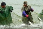 В Атырауской области рыбаки приступили к осенней путине с опозданием