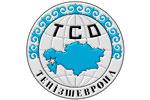 В 2011 году ТОО «Тенгизшевройл» приобрело у Казахстана товаров и услуг на 1,6 млрд. долларов
