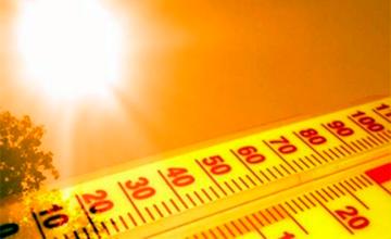 Сегодня - Международный день климата
