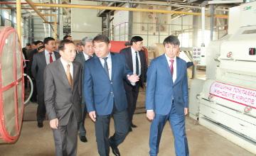 В ЮКО запущен завод по переработке хлопка-сырца стоимостью 900 млн. тенге