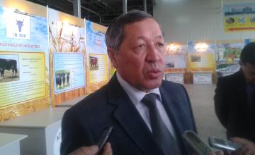 Актюбинская область планирует увеличить экспортный потенциал производства мяса к 2016 году