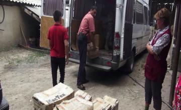 Қазақ-қырғыз шекарасында 2,5 тонна ірімшікті заңсыз алып өтпек болғандар ұсталды