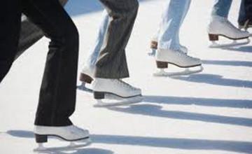 Алматыдағы мұз айдыны сарайы мен аренасын салуға 256 млн. АҚШ доллары жұмсалмақ