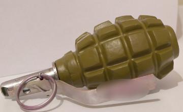 В двух районах Жамбылской области найдены 4 гранаты