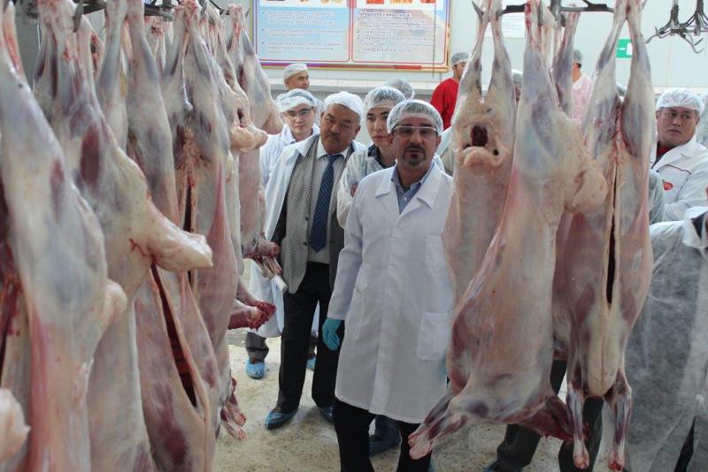 开辟新市场 哈萨克斯坦羊肉将出口巴林