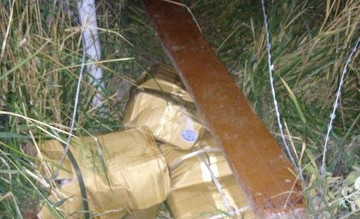 Kazakh border patrol foils poultry smuggling