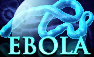 库斯塔奈州召开埃博拉预防工作专题研讨会