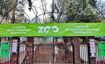 Алматы зообағына келушілер жыртқыштарды өз қолымен қоректендірді (ФОТО)