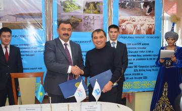 KZT 80 mln to build ecological park in E Kazakhstan