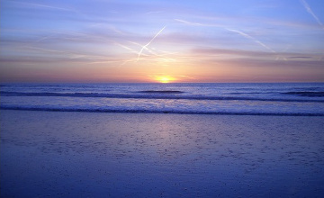 Около 50 тыс голландцев по традиции окунулись в Северное море