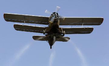 Woman survives deadly AN-2 plane crash in Zhambyl region