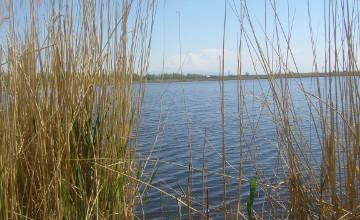 Аким Жамбылской области поручил  проверить техническое состояние водных объектов региона (ФОТО)