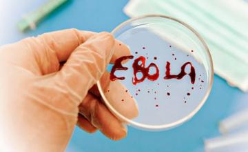 世界卫生组织批准快速诊断感染埃博拉病毒的检测方法