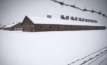 Германияда 94 жастағы қарияны 15 жылға бас бостандығынан айыруы мүмкін
