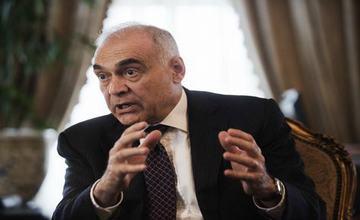 埃及外长:不排除埃及可能成为上合组织正式成员国