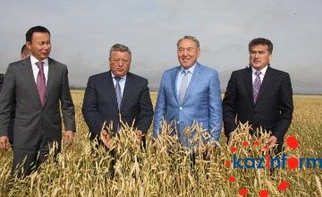 纳扎尔巴耶夫:哈萨克斯坦农产品质量世界一流