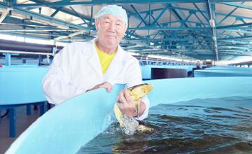 В Жамбылской области появится завод комбинированных кормов
