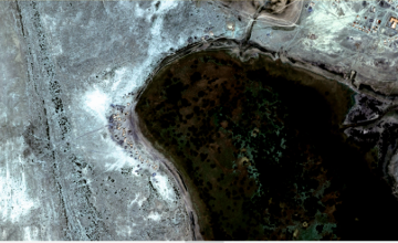Казахстанские спутники ДЗЗ по заказу ООН ведут мониторинг состояния саксаула на дне Арала