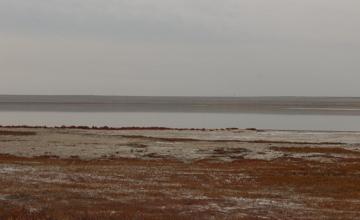 В Павлодарской области паспортизируют  12 соленых озер