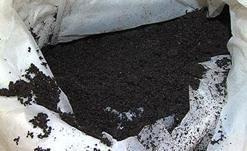 В СКО успешно внедрили технологию производства биогумуса с помощью червей