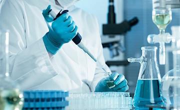 Ученые: Иммунная система в состоянии победить рак