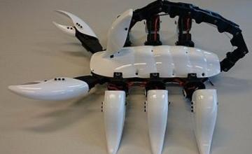Студенттер алып шаян роботты жасап шығарды