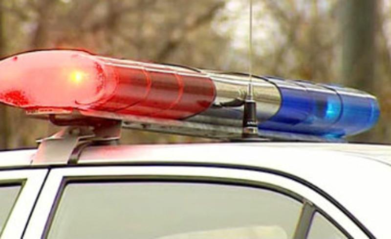 В Алматинской области полиция применила оружие в погоне за пьяным водителем