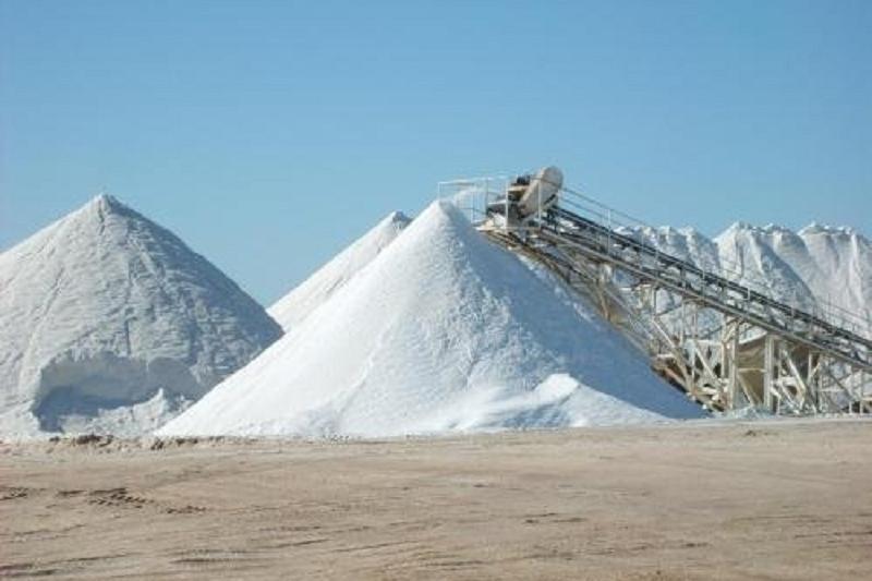 В Кызылординской области увеличили объемы производства соли