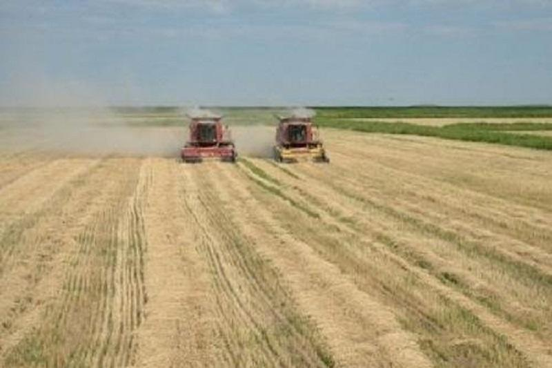 Myrzakhmetov: Local authorities to be allowed to buy farmlands for public use