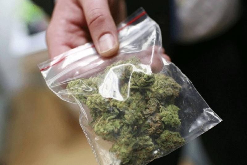 Жителя Капшагая задержали с крупной партией марихуаны