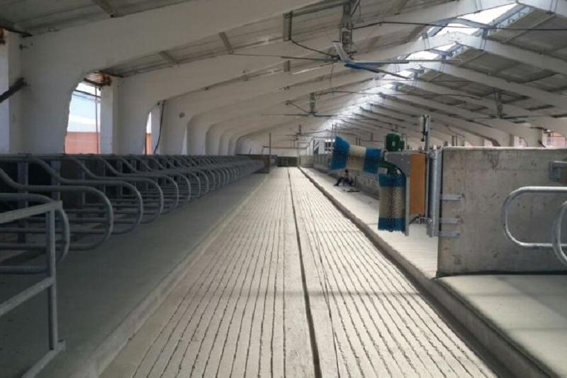 Аграрная кредитная корпорация профинансировала молочную ферму в Алматинской области