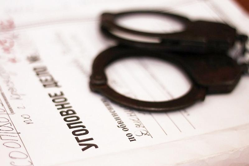 Четверо жителей Алматинской области изнасиловали девушку