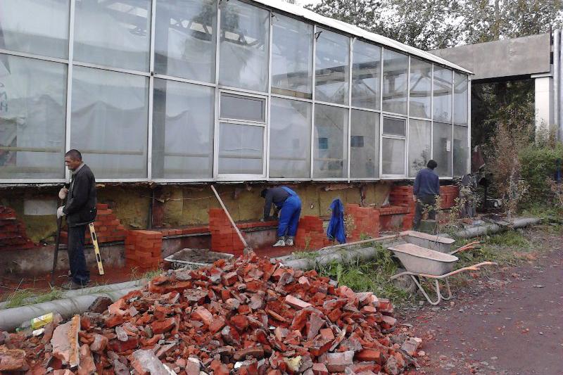 20 млн тенге выделили на ремонт ботанического сада в Петропавловске