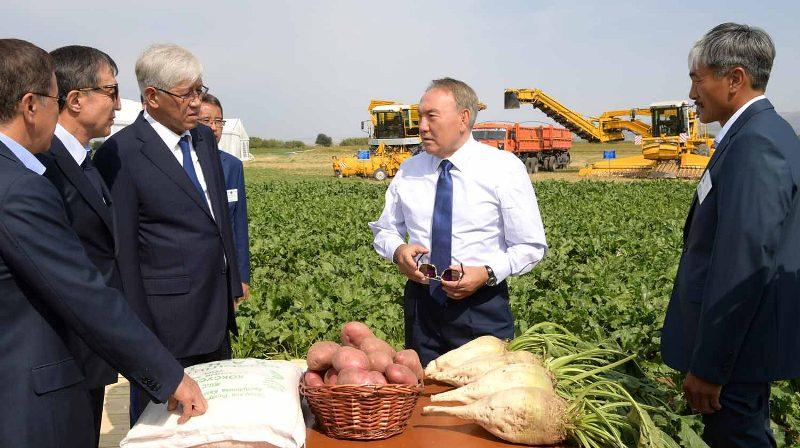 Глава государства призвал повысить качество сельхозпродукции