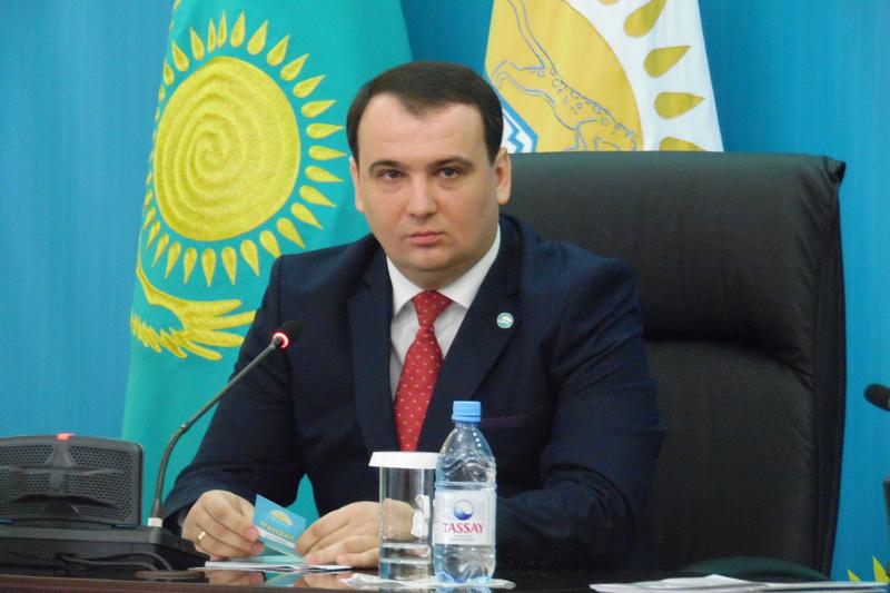 Плечом к плечу с НПО работает «Нур Отан» над выполнением Плана нации - Илья Теренченко