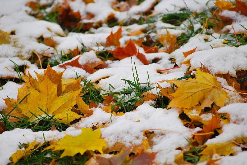 Heavy snowfall to hit southern regions Oct 19