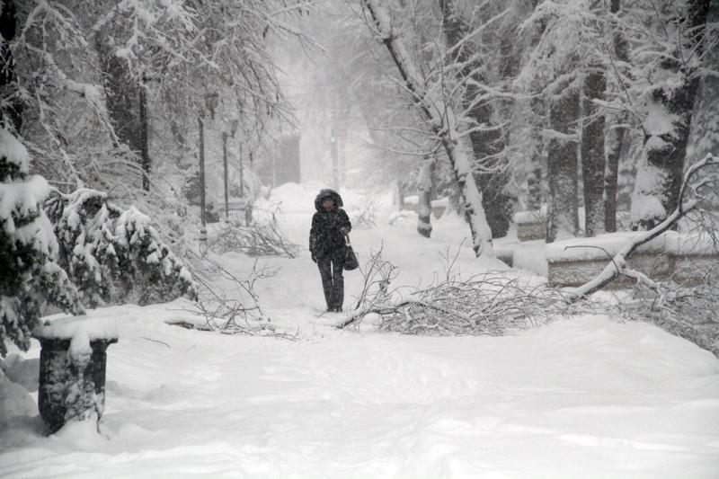В ближайшие дни в Алматы ожидается сильный снегопад