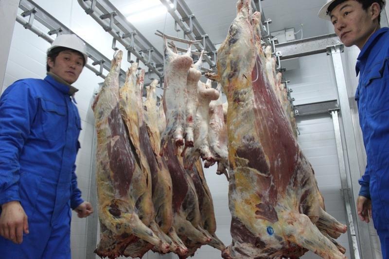 Акмолинский мясокомбинат начал поставки в Астану