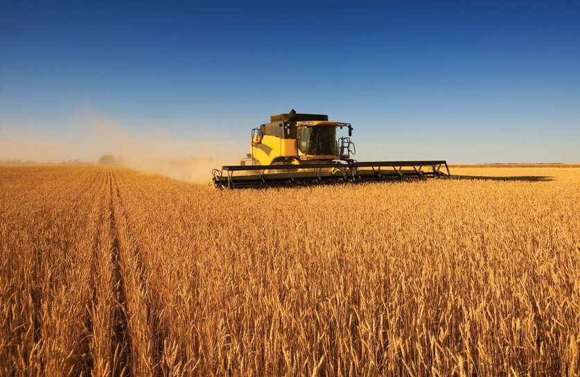 哈萨克斯坦将扩大同阿根廷等南美国家间农业领域合作