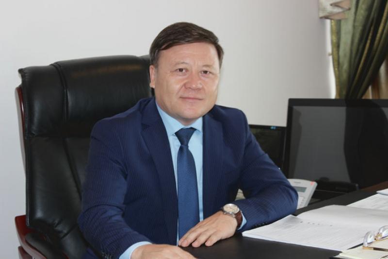 Kazakhstan makes its plans a reality despite crisis - expert