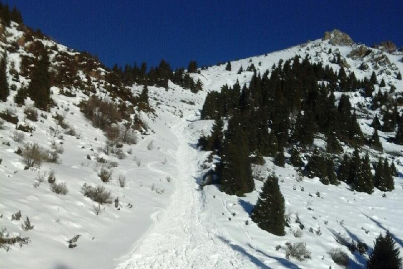 国家气象总局就大冬会裁判因雪崩遇难一事作出说明