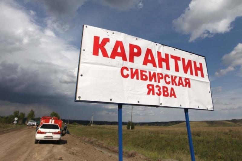 Вспышки сибирской язвы в Казахстане произошли из-за некачественных вакцин