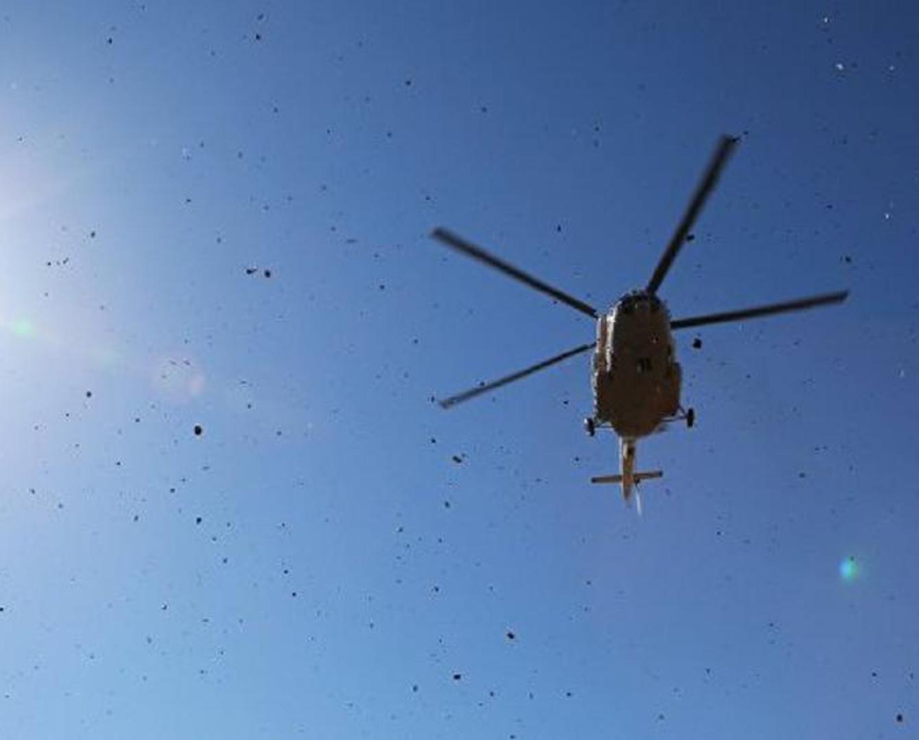 Стал известен владелец рухнувшего в Восточно-Казахстанской области вертолета