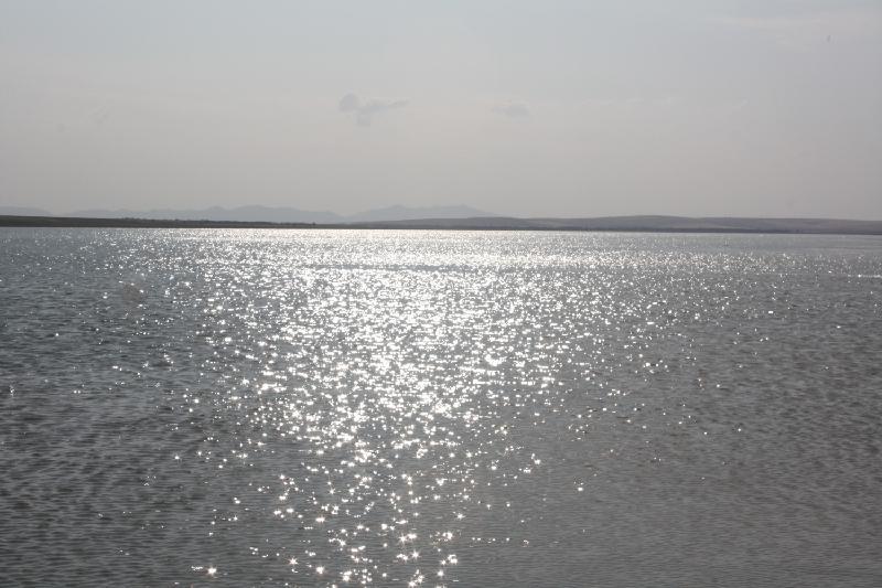 Жамбыл облысында иесіз су қоймалары анықталды
