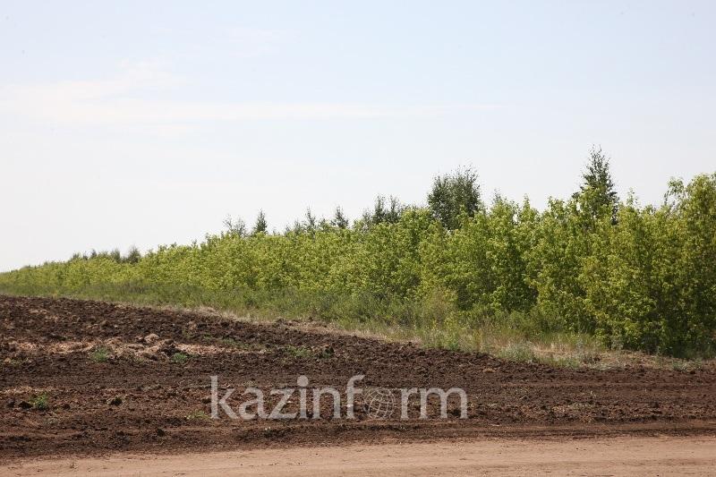 Қызылорда облысында пайдаланбай жатқан жерлерді мемлекетке қайтару науқаны басталды