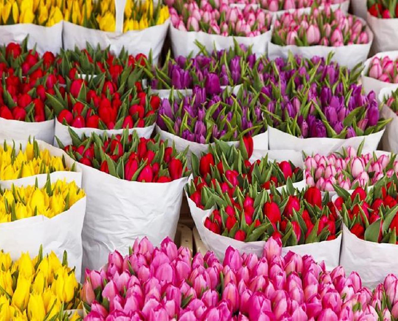 К 8 марта в  Астану завезли 9 тонн цветов