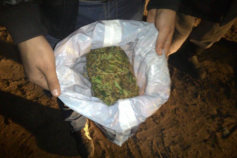 На Тенгизском месторождении выявили 16 фактов хранения наркотиков