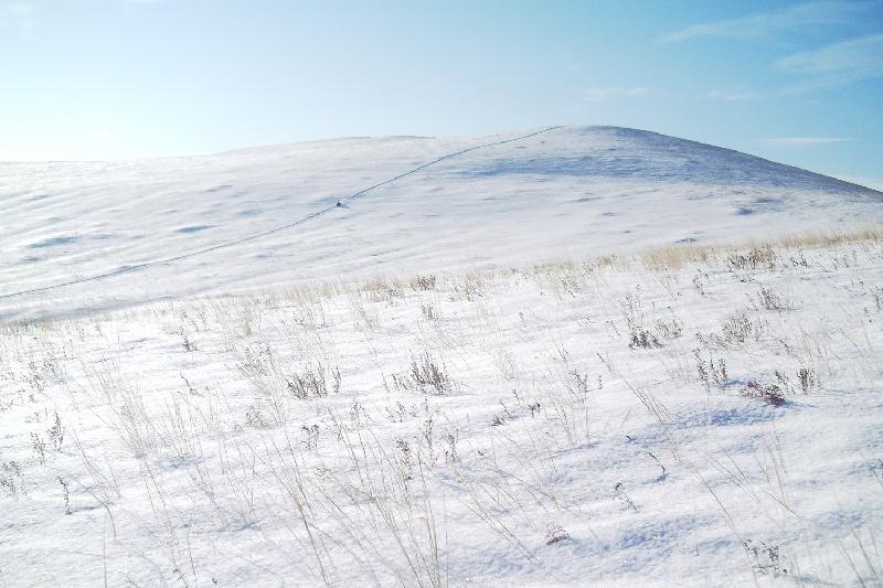 Как казахстанцы выжили этой зимой в степи