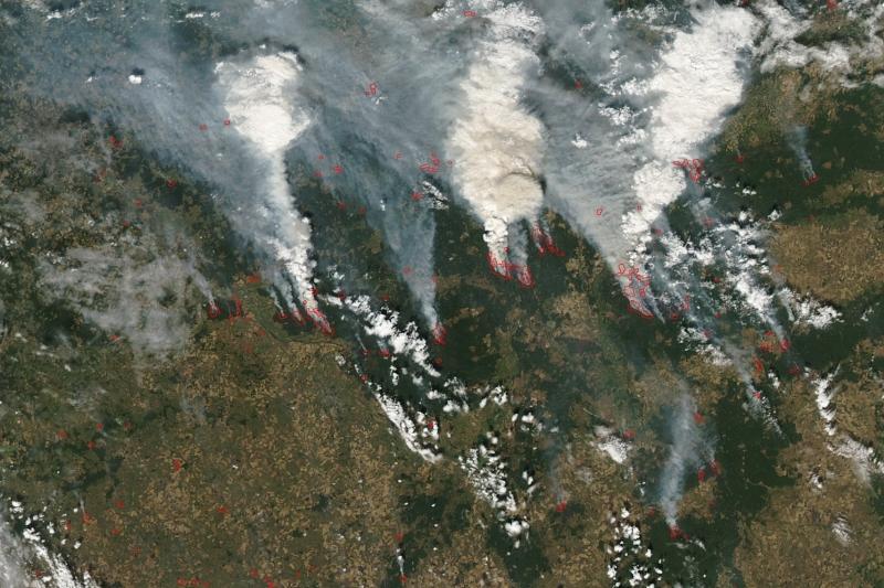 Снимки со спутника помогут спасателям отслеживать возникновение пожаров в Казахстане