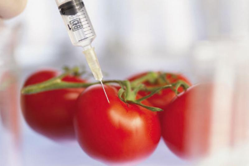 ГМО-продукты становятся опасными для жизни казахстанцев - Бектаев